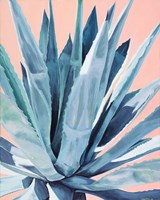 Agave with Coral Fine-Art Print