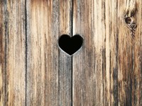 Heart in Wood Fine-Art Print