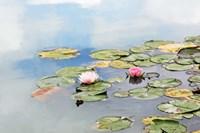Monet's Garden Fine-Art Print