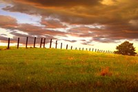 Fenceline, South Dakota Fine-Art Print