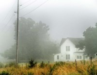 Fog House Fine-Art Print
