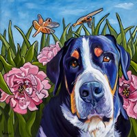 Dog and Dragonflies Fine-Art Print