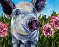 Pigs and Peonies Fine-Art Print