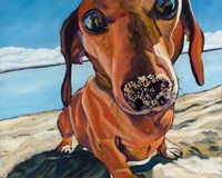 Sand Dog Fine-Art Print