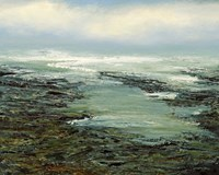 Shallow Reef Fine-Art Print