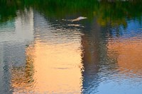 Reflection on the Iowa River No. 1 Fine-Art Print