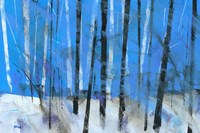 Birch and Black Ash Saplings Fine-Art Print