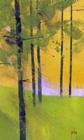 Simple Spruce Fine-Art Print
