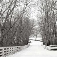 Country Lane in Winter Fine-Art Print