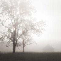 Farmland, Appalachia, 2013 Fine-Art Print