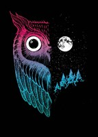 Night Owl Fine-Art Print