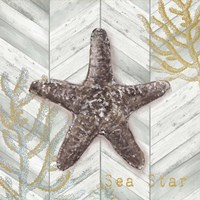 Gray Gold Chevron Star Fish Fine-Art Print