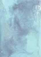 Arctic Brilliancy I Fine-Art Print