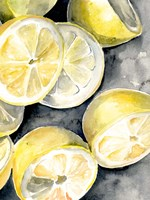 Lemon Slices II Fine-Art Print