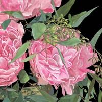 Springtime Fragrance II Fine-Art Print