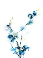 Blue Blossoms Fine-Art Print