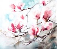 Magnolia, Spring Fine-Art Print