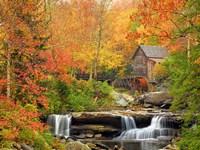 Autumn Splendor Fine-Art Print