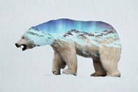 The Arctic Polar Bear Fine-Art Print
