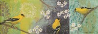Goldfinches Blooming Fine-Art Print
