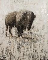 Lone Buffalo Fine-Art Print