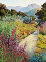 Garden Path Fine-Art Print