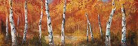 Autumn Birch I Fine-Art Print