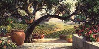 Napa Patio Fine-Art Print