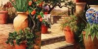 Turo Tuscan Orange Fine-Art Print
