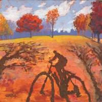 Bicycle Shadow Fine-Art Print