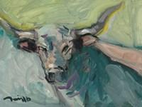 Longhorn Fine-Art Print