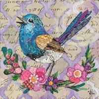 Scallop Wren Fine-Art Print