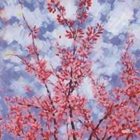 Blossoms #3 Fine-Art Print