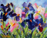 The Iris Show Fine-Art Print