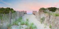 Crescent Beach Path Fine-Art Print