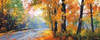 Autumn Backlight Fine-Art Print