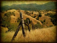 Weathered Ranch Fence Fine-Art Print