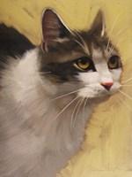 Derby Cat Fine-Art Print