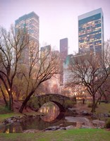 Central Park, NYC Fine-Art Print