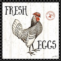 Free Range Fresh IV Checker Border Fine-Art Print
