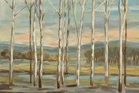 Silver Forest Fine-Art Print