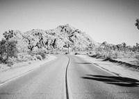 Road Trip I Crop Fine-Art Print