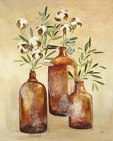 Cotton Still Life III Fine-Art Print