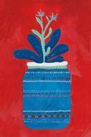 Jar Succulent Fine-Art Print