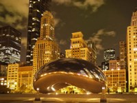 Bean at Night Fine-Art Print