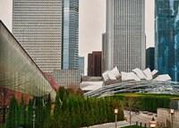 Chicago 350 Fine-Art Print