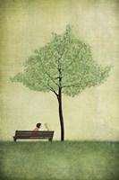 The Cherry Tree - Summer Fine-Art Print