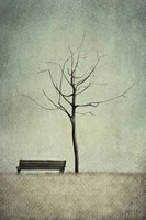 The Cherry Tree - Winter Fine-Art Print