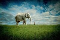 Elephant Follow Me Fine-Art Print