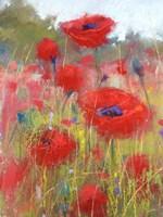 In the Poppy Field Fine-Art Print